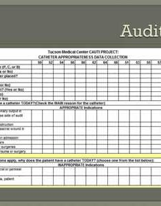 Text description is shown below image audit tool also leveraging cultural change to reduce urinary catheter use agency rh ahrq