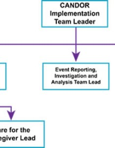 Figure depicts team structure the candor implementation leader is at top of also guide for process agency healthcare rh ahrq