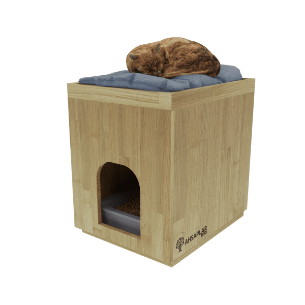 Kestane kedi evi