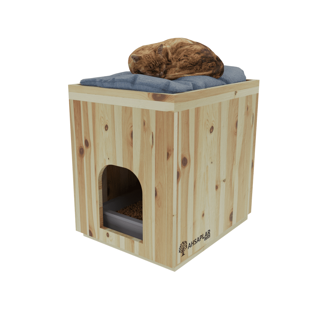 Ladin kedi evi