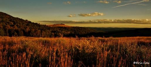 Nature_Landscape_DSC_0117