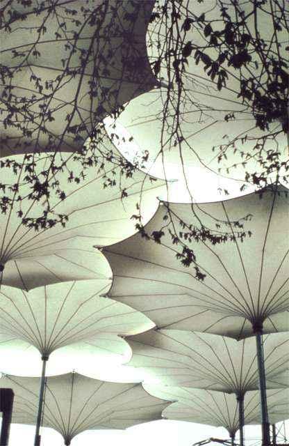 frei-otto-umbrellas-for-pink-floyd-1977-concert-tour