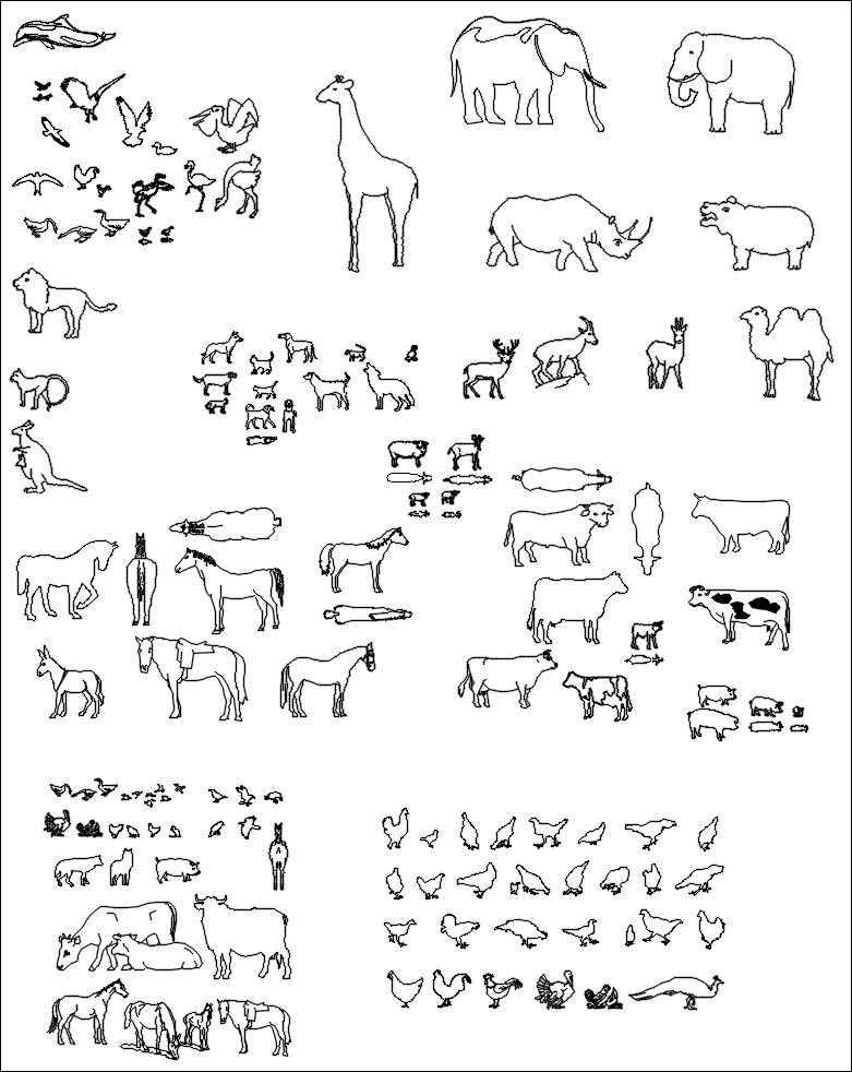 Animal Blocks 1