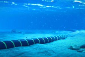 10 Top Undersea (Submarine) Internet Cable Companies 2021