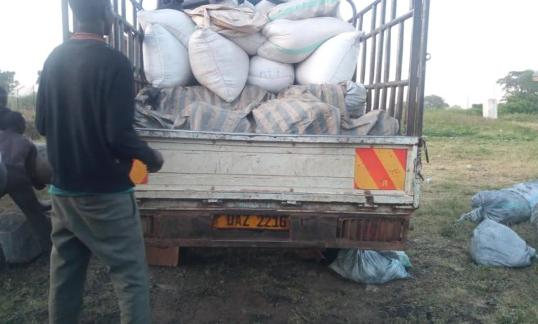 Photo of Police Impound Charcoal Smugglers in Teso