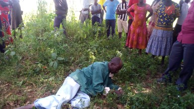 Photo of Man Eats Grass After Stealing a Bull in Bukedea