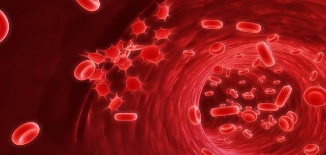 Trombosit Demam Berdarah dan Batas Normal Jumlah Kadarnya