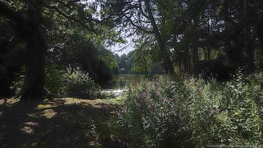 Calderstones Park lake