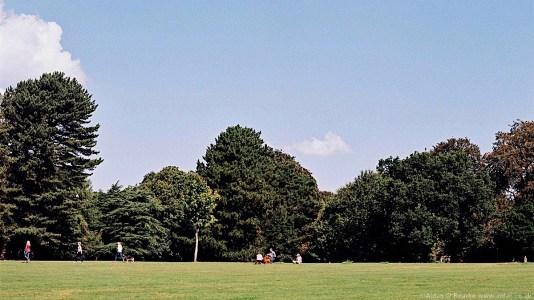 Liverpool Calderstones Park grass