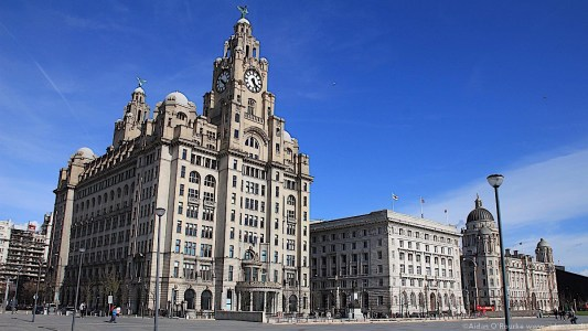 The Liver Building 25.02.2009