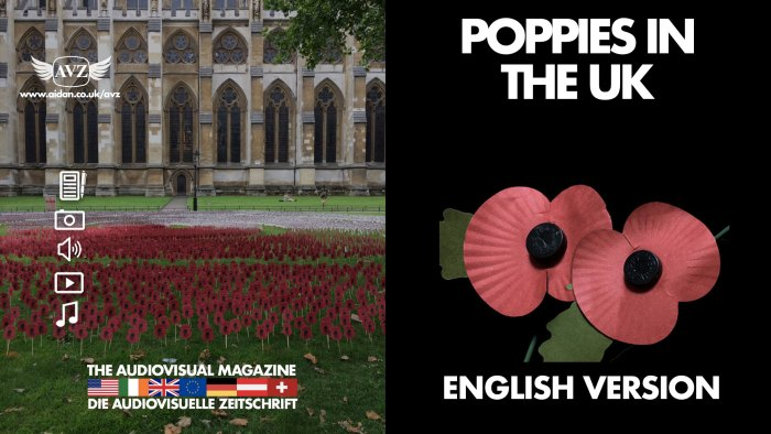 Poppies in the UK - English version