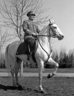 Tito White Horse