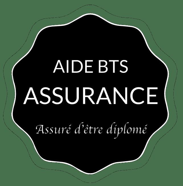 Aide BTS Assurance