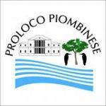 P_L-logo-150x150