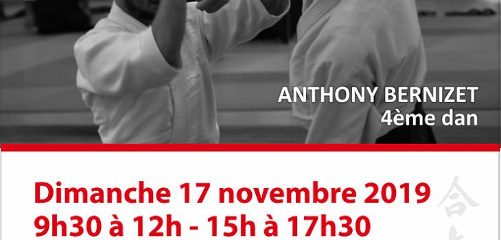 Stage Prépa 1er/2ème Dan à Arnay-le-Duc le 17 novembre