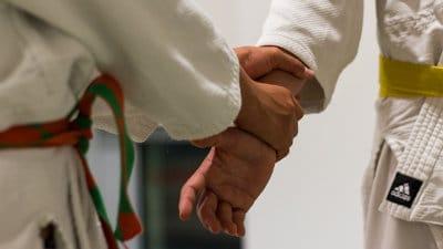 Permalien vers : L'Aïkido et les enfants
