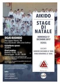 Stage di Natale 2017 - Roma