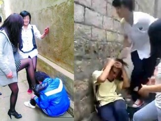 غرفشی bullying