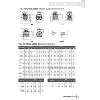 TechTop 37 kW Motor 415V 3 Phase 6 Pole, 980 RPM, Foot
