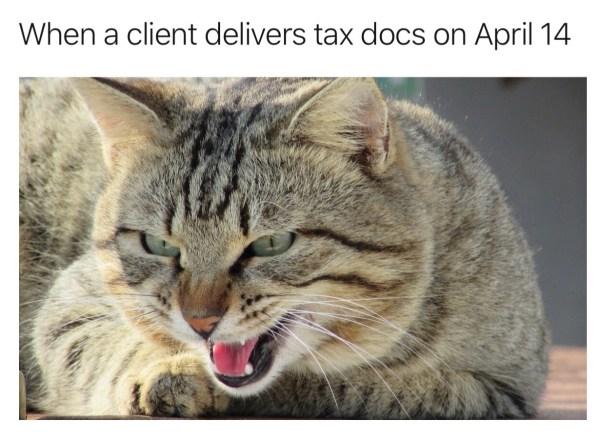 Nicholas Aiola, CPA - Tax Time Meme Dump - Growling Cat