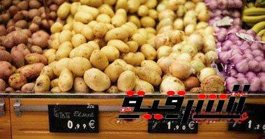 الزراعة تستورد 125 الف طن تقاوي بطاطس خلال ايام