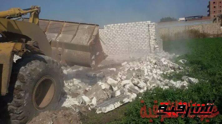 إزالة 301 حالة تعدي على الأرض الزراعية في الشرقية