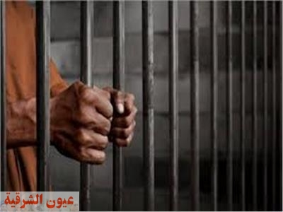 السجن المشدد 7 سنوات للصوص الآثار بالشرقية