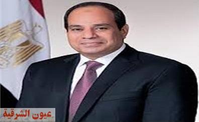 الرئيس السيسي يمنح الأمان لـ 28 مليون إمرأة مصرية