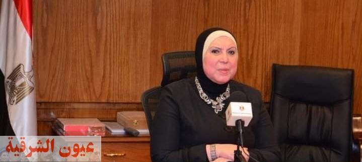 وزارة التجارة تقرر وقف تصدير الفول الحصى والمدشوش لمدة ٣ أشهر
