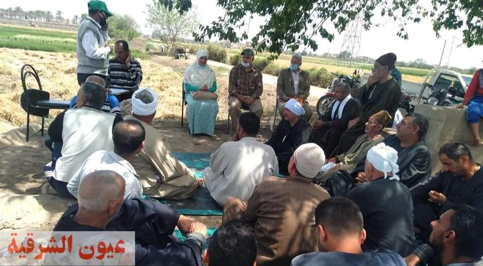 الإدارة الزراعية بههيا تنظم يوم حصاد لمحصول القمح صنف جيزة 12 بقرية المهدية