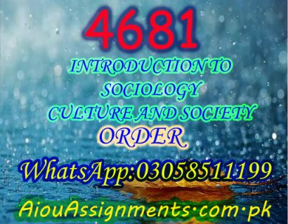 4681 INTRODUCTION TO SOCIOLOGY CULTURE AND SOCIETY MSc Sociology Spring 2019