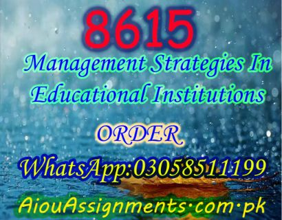 8615 Management Strategies In Educational Institutions Bed Spring 2019