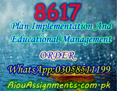 8617 Plan Implementation And Educational Management Bed Spring 2019