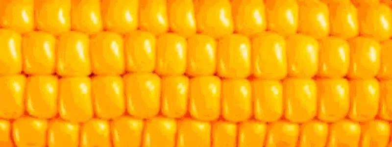 Prekyba Kukurūzų Ateities sandoriais (Futures): detalės ir TA