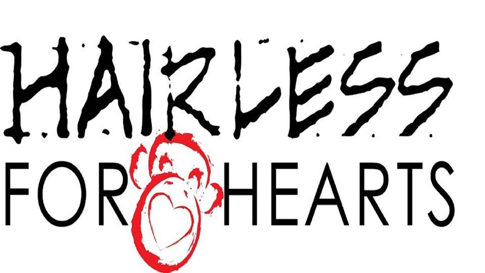 hairless-for-hearts-logo