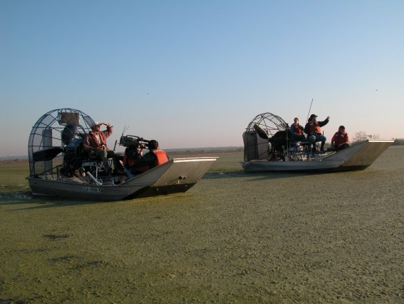 At Salvador Wildlife Management Area with a filmcrew from the JASON project / photo: Serge