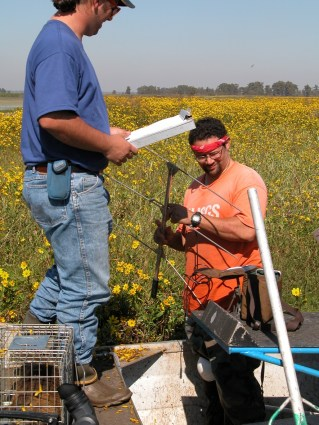 Recovery and verification of retrieved radio transmitters / photo: Serge