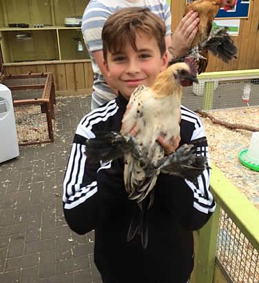 Adam holding chicken