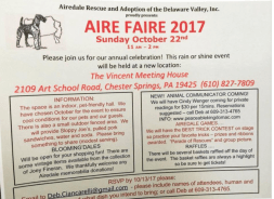 Postcard for Aire Faire 2017 ARADV
