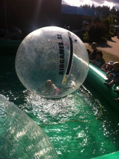 galleri_vattenboll2