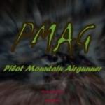 Group logo of Pilot Mountain Airgunner
