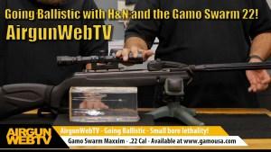 Gamo Swarm Ballistics