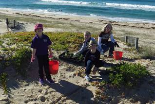 National Tree Day dune grass planting