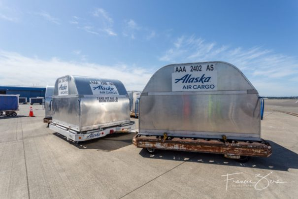 Filled cans on the Seattle cargo ramp, ready to be flown to Alaska.