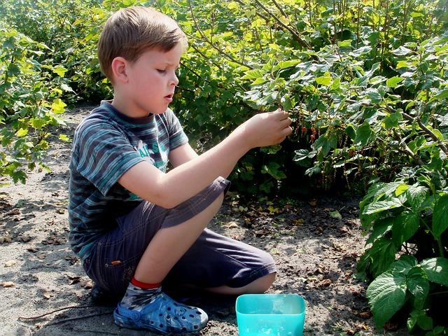 jardiner service entre parents