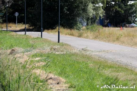 Graspollen over de weg