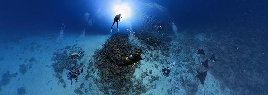 Подводный мир Мальдив. Дайверы - AirPano.ru • 360 Градусов Аэрофотопанорамы • 3D Виртуальные Туры Вокруг Света