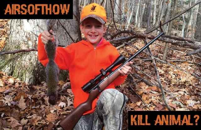 Can you kill animals with airsoft gun?