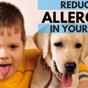 reduce allergens in your home with indoor air quality solutions from air systems