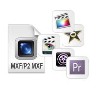 convert MXF videos